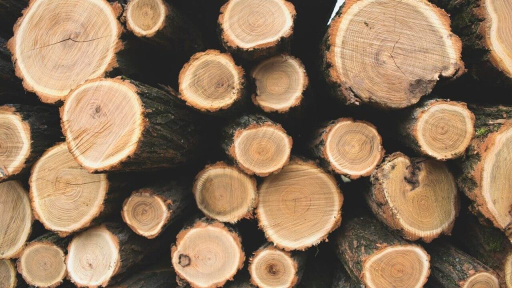 Metsa hind, metsamaa hind, metsamaterjal
